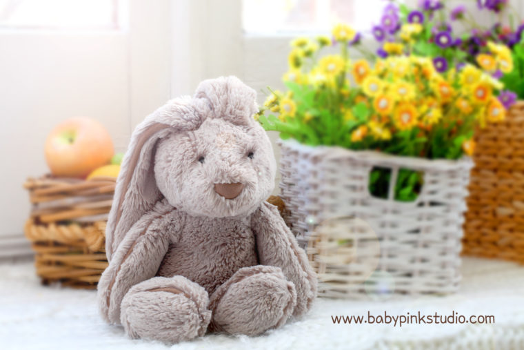 Mr.Bunny | Babypink photography in Toronto